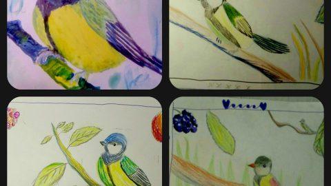 Урок рисования Синичка